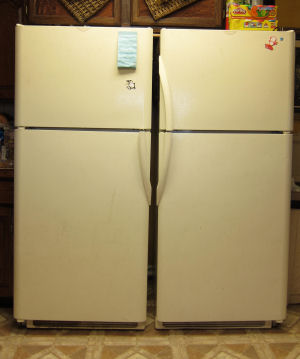 Best Economical Refrigerator for Large Families
