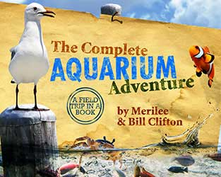 Go to The Complete Aquarium Adventure by Master Books ISBN-13 9780890515549
