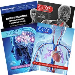 Elementary Zoology: Nervous, Respiratory & Circulatory Systems Curriculum Pack