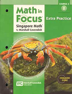 Math in Focus Extra Practice, Book B Course 2 9780547579085