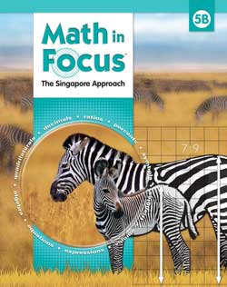 Go to Math in Focus 5 B Homeschool Kit 9780547428840