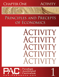 Paradigm Economics Activity Booklet Set.