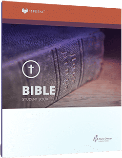 Lifepac Bible 10 Student Workbooks Only
